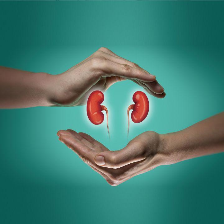 Maladies rénales : la greffe est le moins cher et plus efficace des traitements ! - Avec Ou Sans Parure -                     Luxe radio