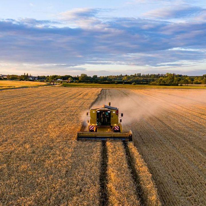 La commercialisation : éternel problème des politiques agricoles ? - Avec Ou Sans Parure -                     Luxe radio