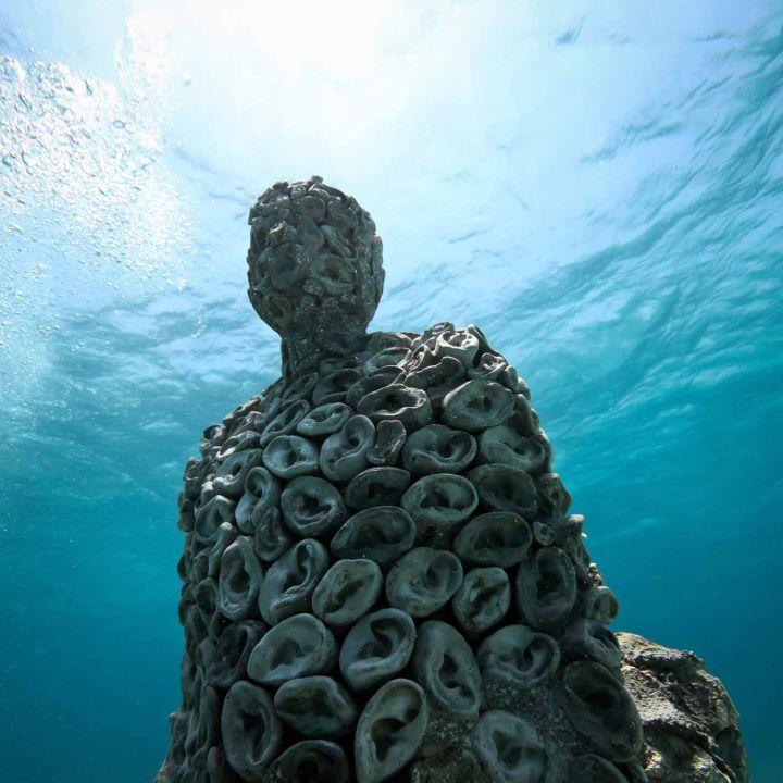 Le 1er musée sous-marin de France ouvrira en 2020 ! - Art Contemporain -                     Luxe radio